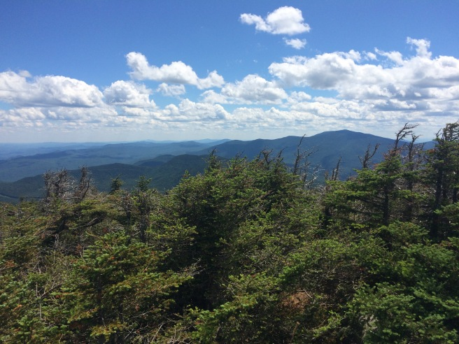 This is a view of Mt Moosilauke from S. Kinsman, climbed some weeks later.